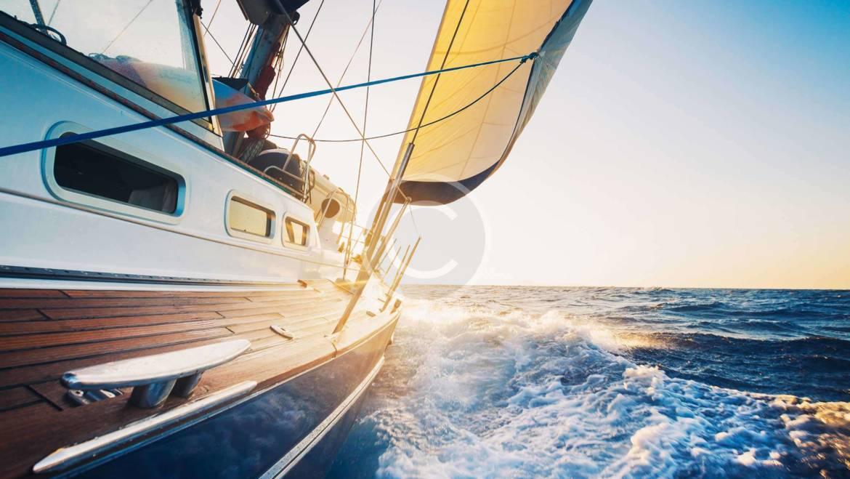 Yacht Regatta & Scuba Diving
